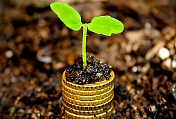 money-growth-concept--coins-in-the-soil-with-young-plant