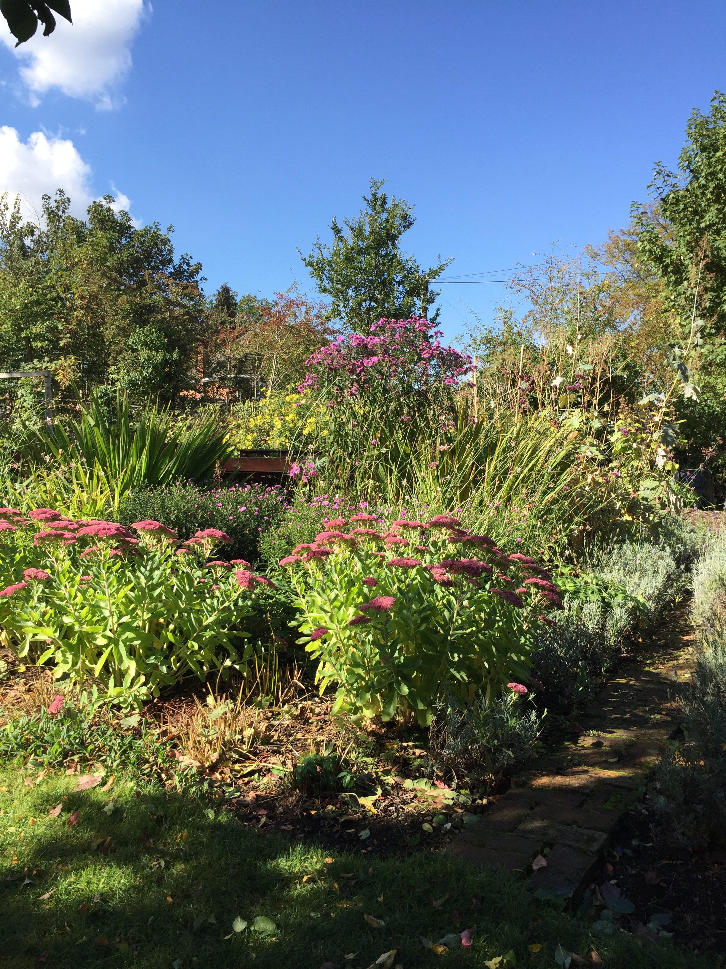 The Ridgeline Trust's Garden Project