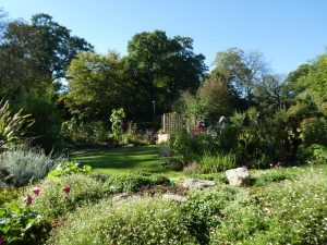 The Ridgeline Trust's Garden Project